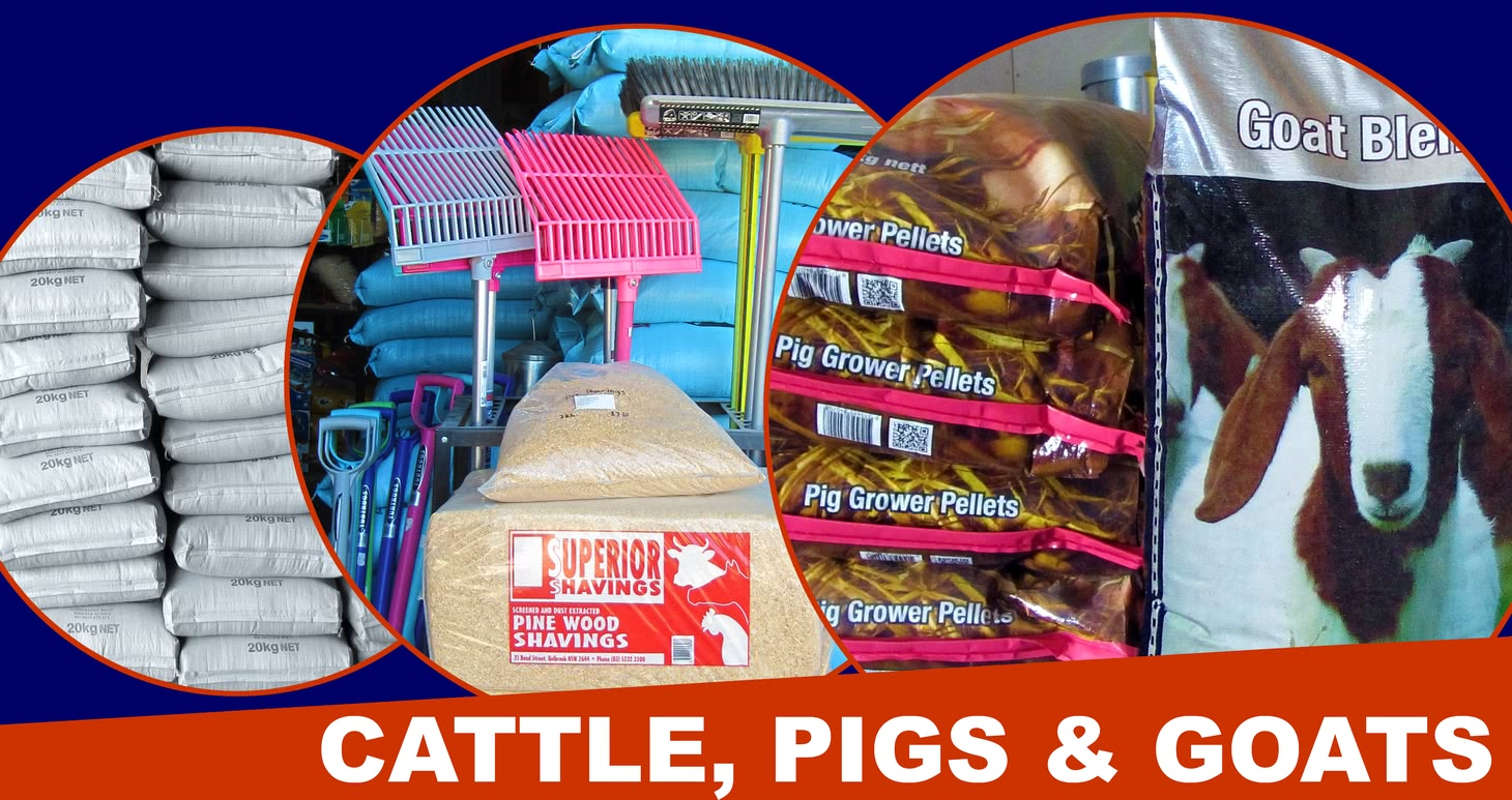 Cattle, pig and goat products.