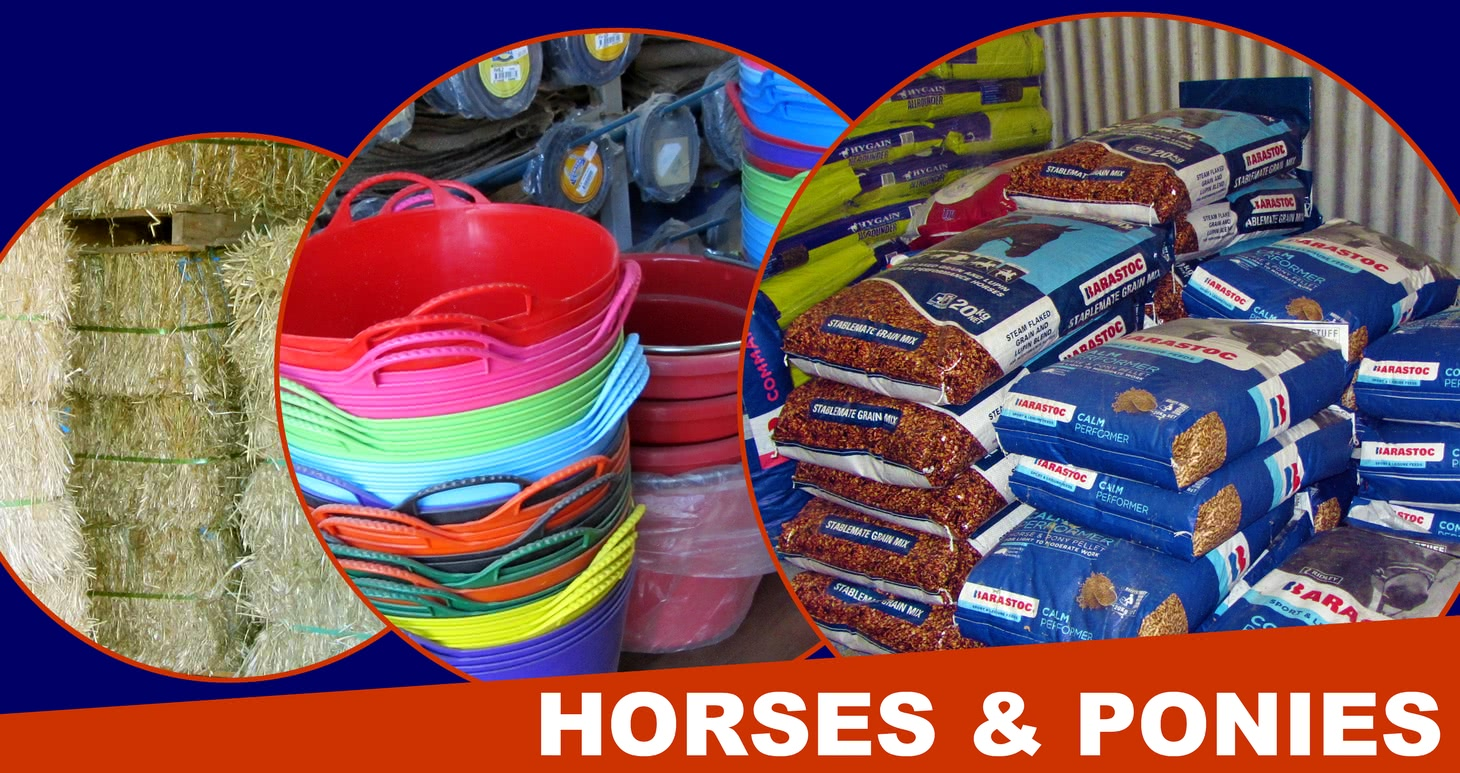Horse and pony products.