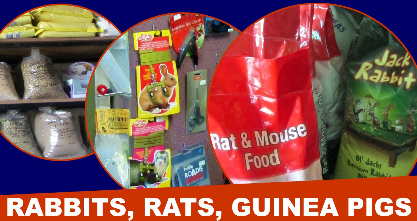 Rabbit, rat and guinea pig products.